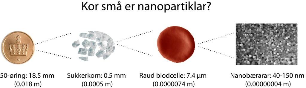 Nanostorleik